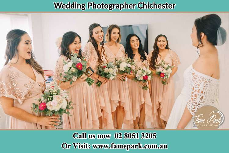 Photo of the Bride and her bridesmaids Chichester NSW 2420