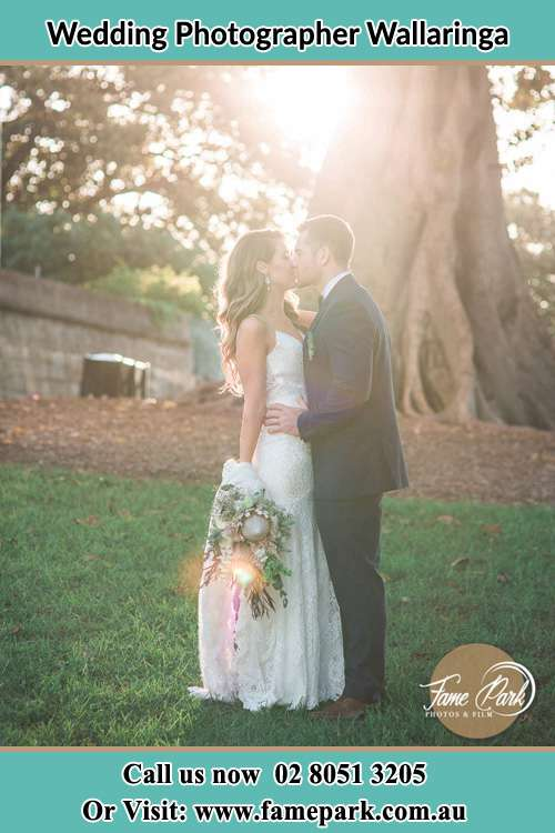 Photo of the Bride and the Groom kissing at the yard Wallaringa NSW 2420